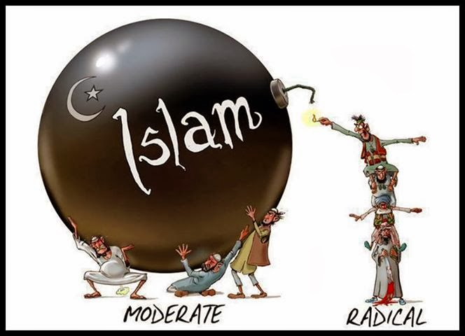 "There is no ""radical Islam"" and there is also no ""moderate Islam"""