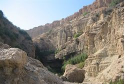 Ein Gedi: One of the Most Beautiful Places in the World