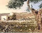 Rachel's Tomb in Biblical Bethlehem