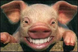 Muslim prisoners sue Britain over pork contaminated food
