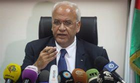Erekat: Israel occupies 100% of Palestine